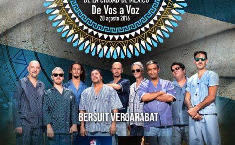 FESTIVAL ARGENTINO 2016 CARPA ASTROS CARTEL MUSICAL